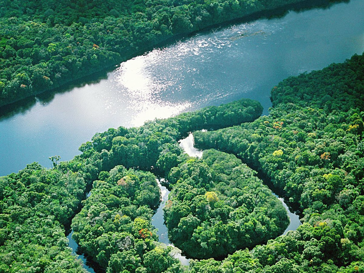 Амазонка картинки реки