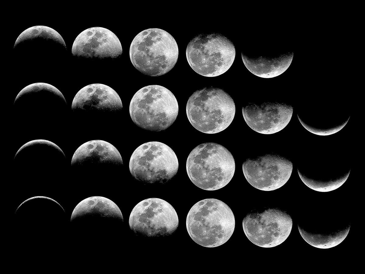 фото луны в разных фазах именно