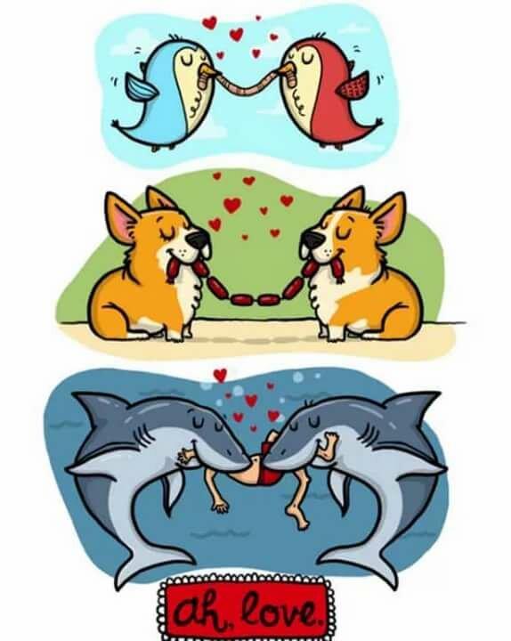 Компасом, картинки про любовь смешно