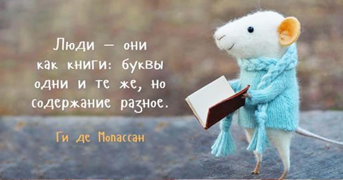 Открытки с цитатами из книг, слон картинках