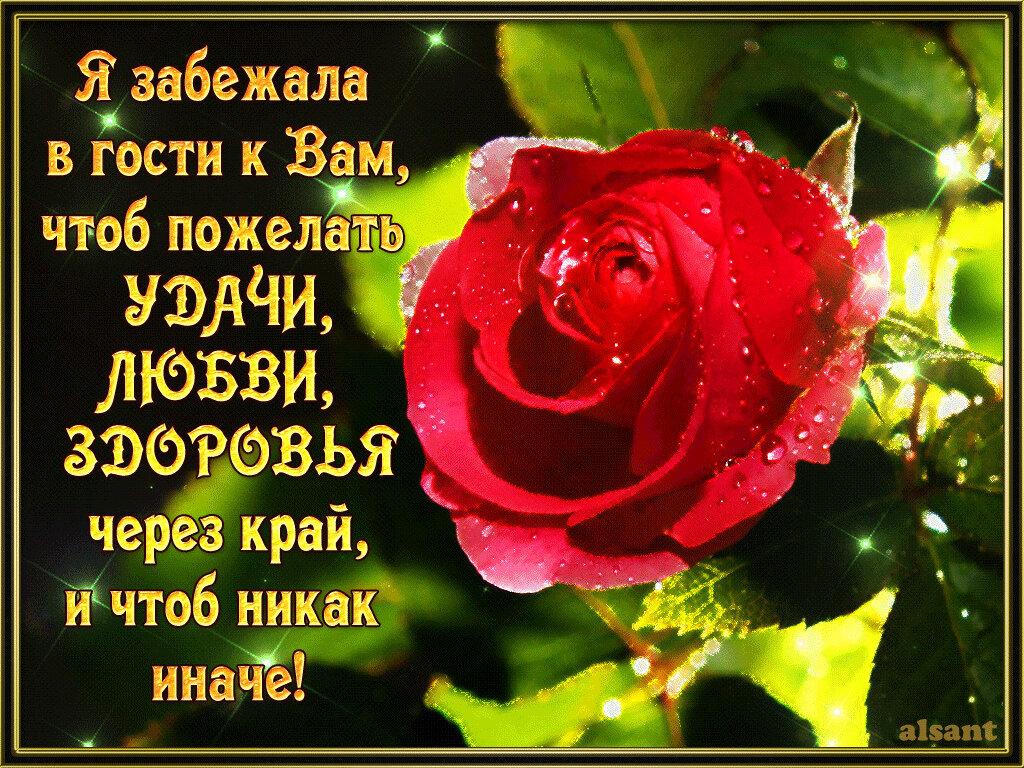 менее, картинки гифки пожелания счастья и здоровья цветущие кустарники
