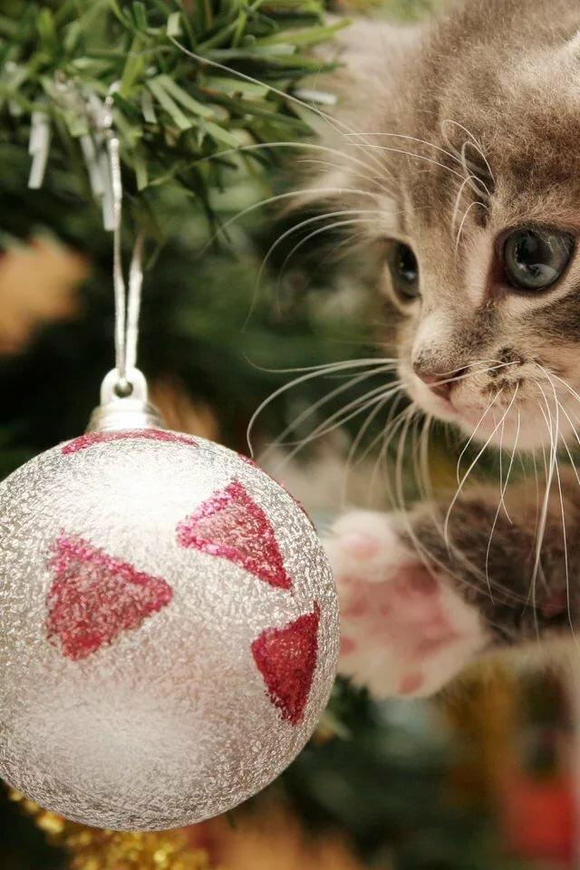 Картинки новогодние вертикальные животные