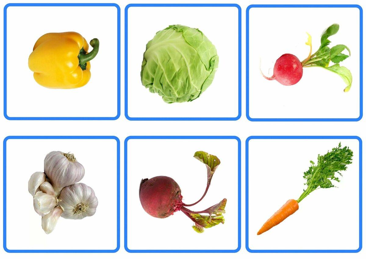 Картинки овощи для игры