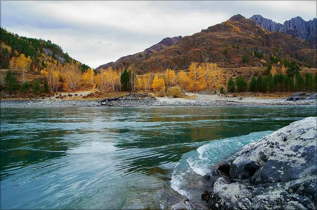 фото реки катунь в горном даже