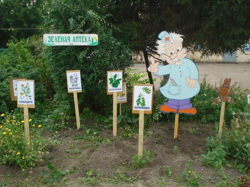Картинки экологической тропы на участке доу