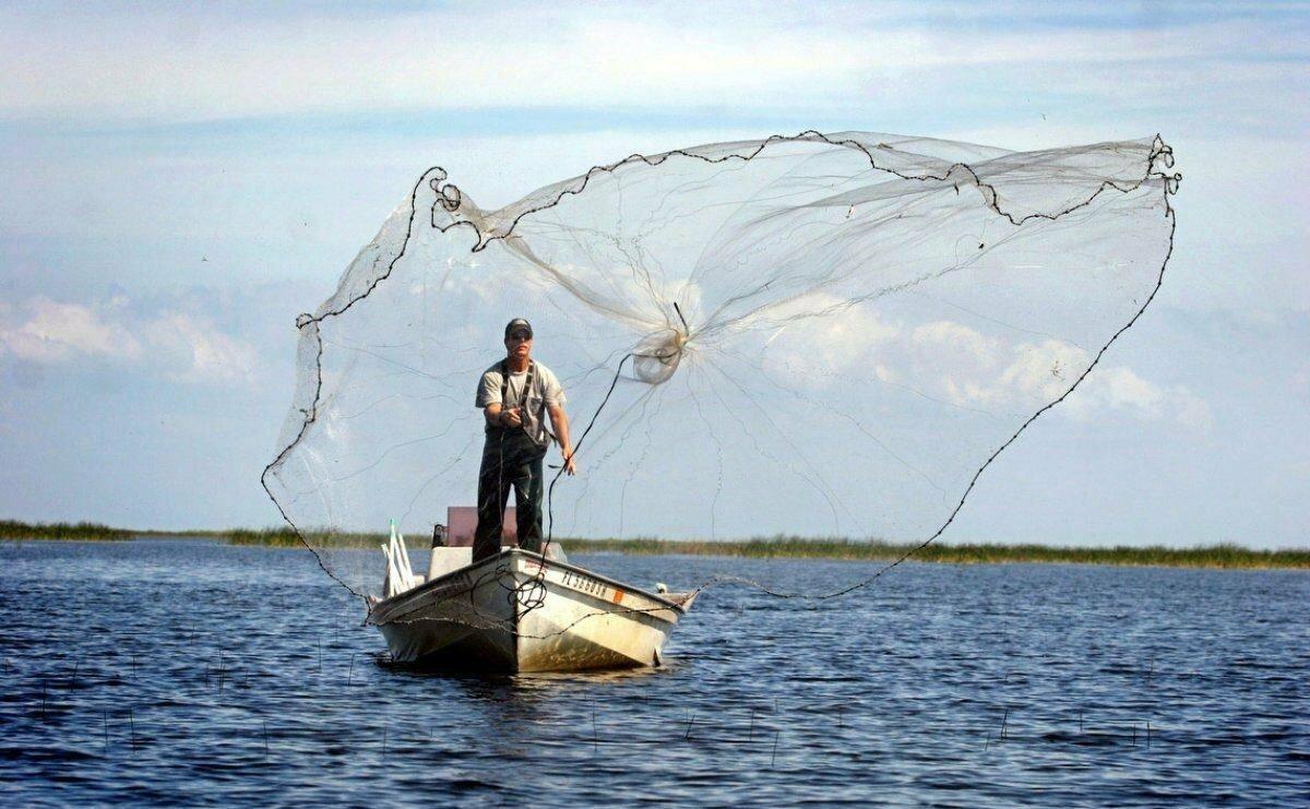 Супер ловушка Findfish в Кургане