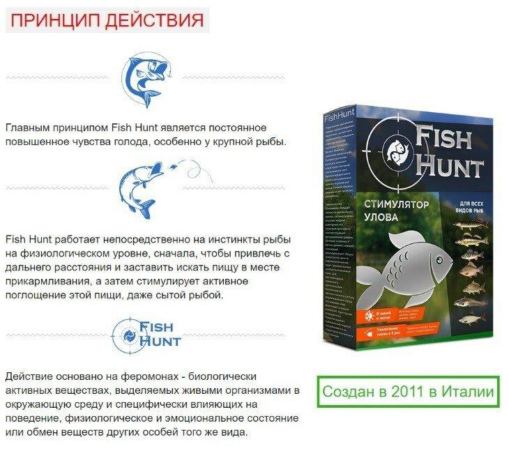 FISH HUNT в Черкесске