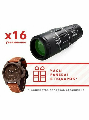 Монокуляр Bushnell и часы Panerai в Грозном