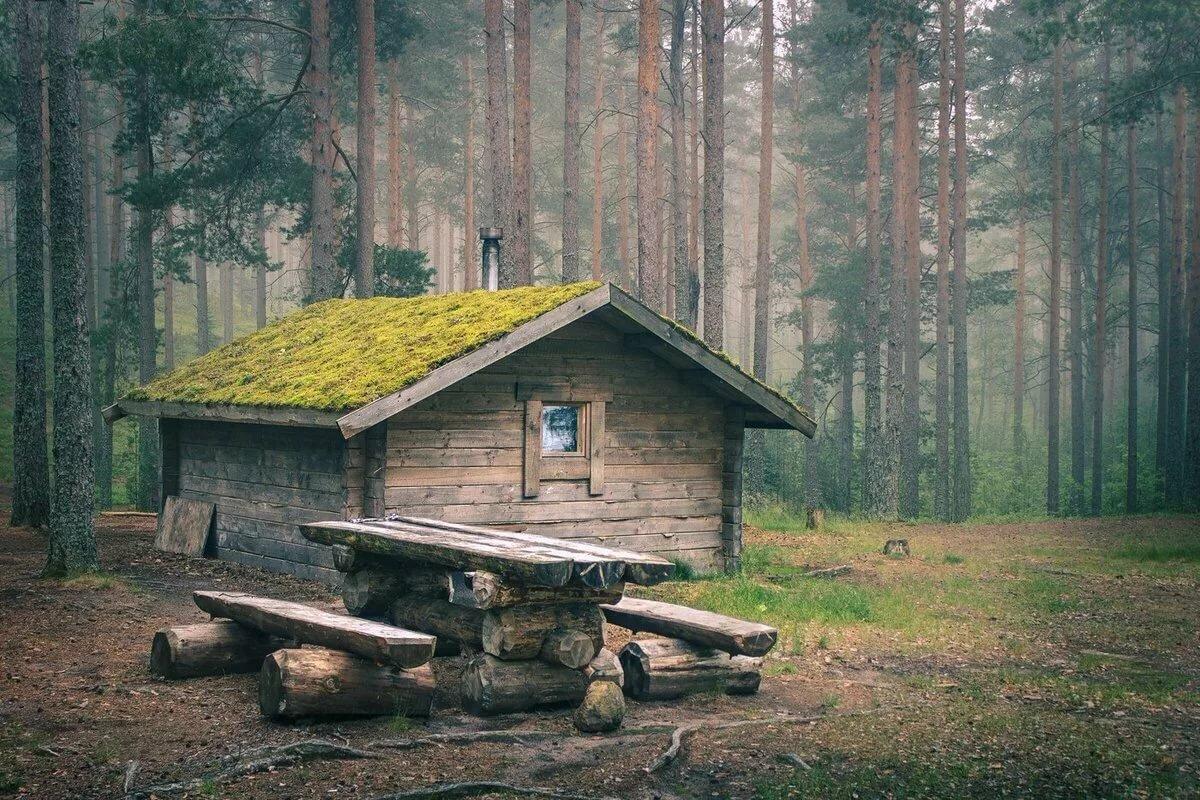 охотничий домик фото в тайге выполняется графическом планшете