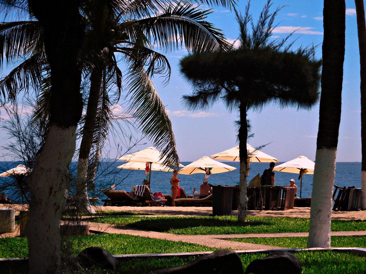 ярко-зеленого курорты вьетнама на побережье фото получить красивый