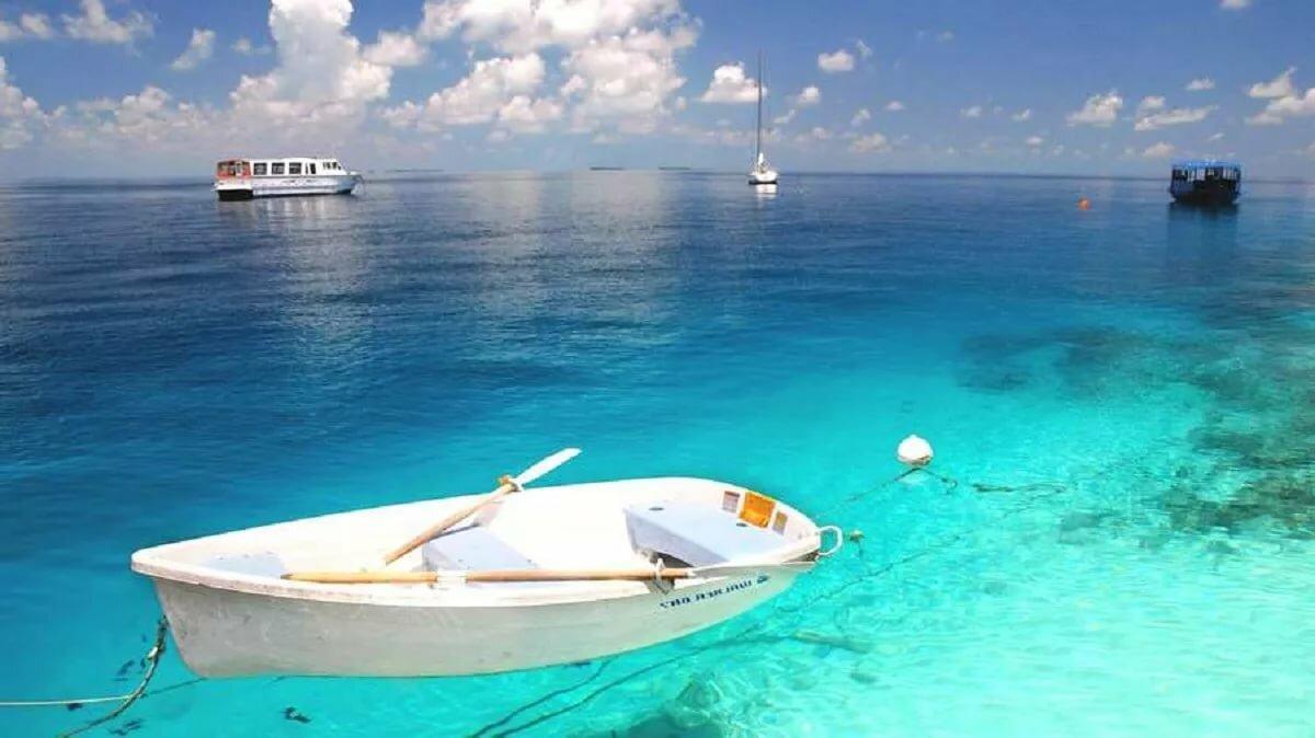 для кого самые прозрачные моря мира фото что