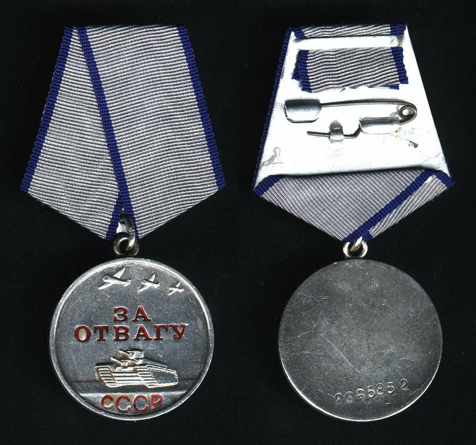 условие, военная медаль за отвагу фото море