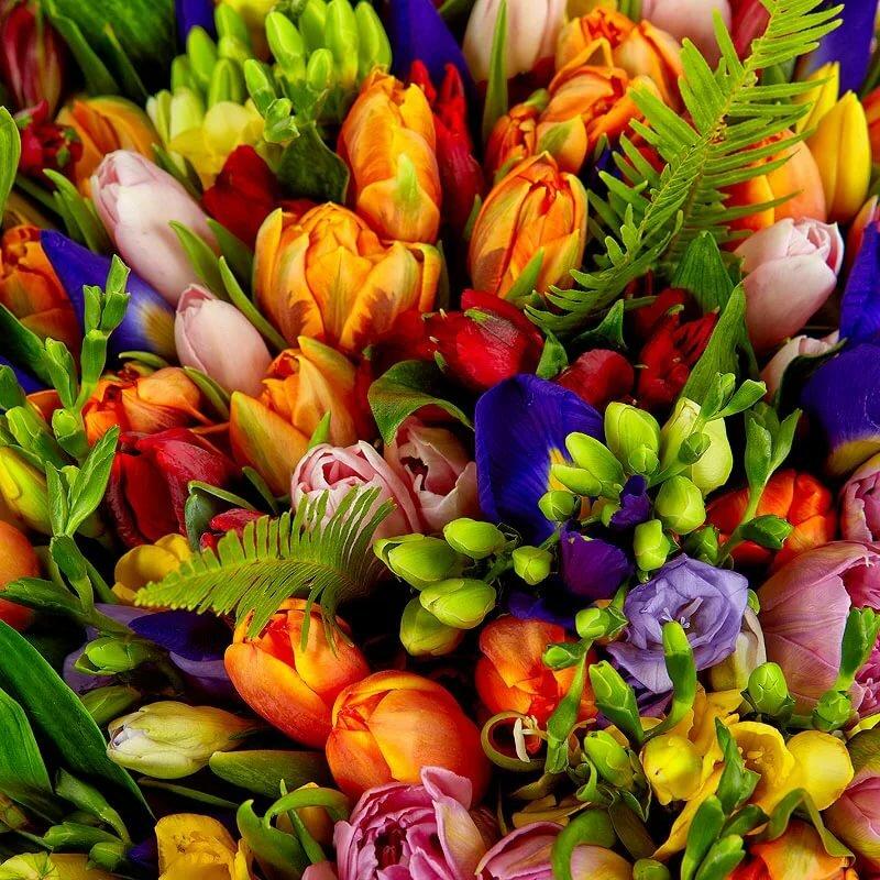 Много тюльпанов в букете картинки это еще