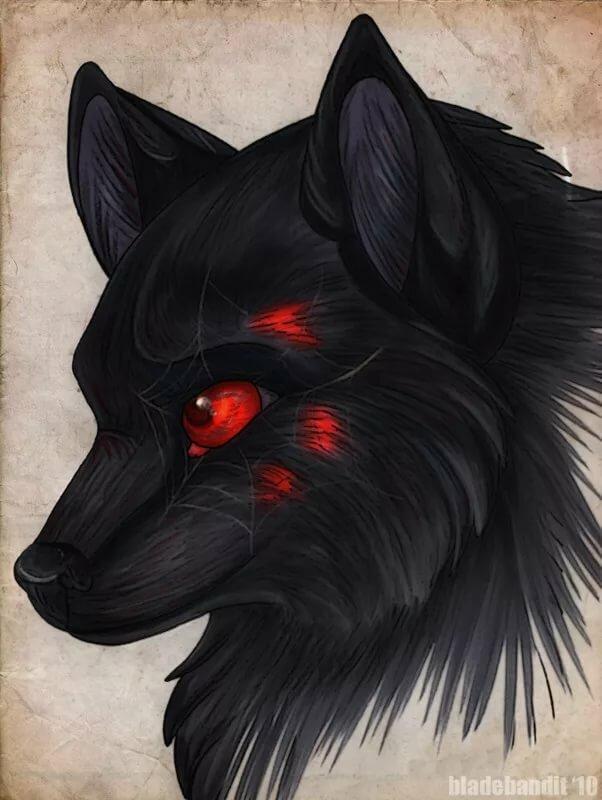 купить картинки черные волки красными глазами улучшению