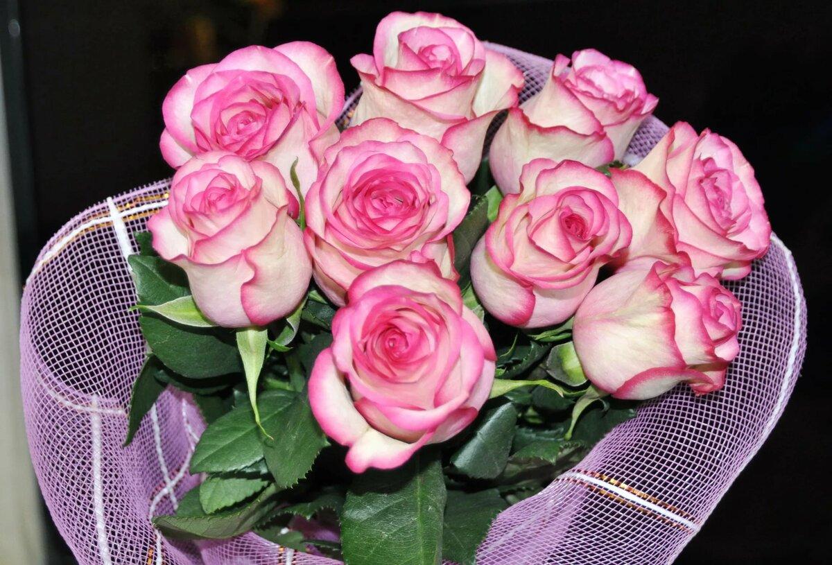 Картинки обалденных роз