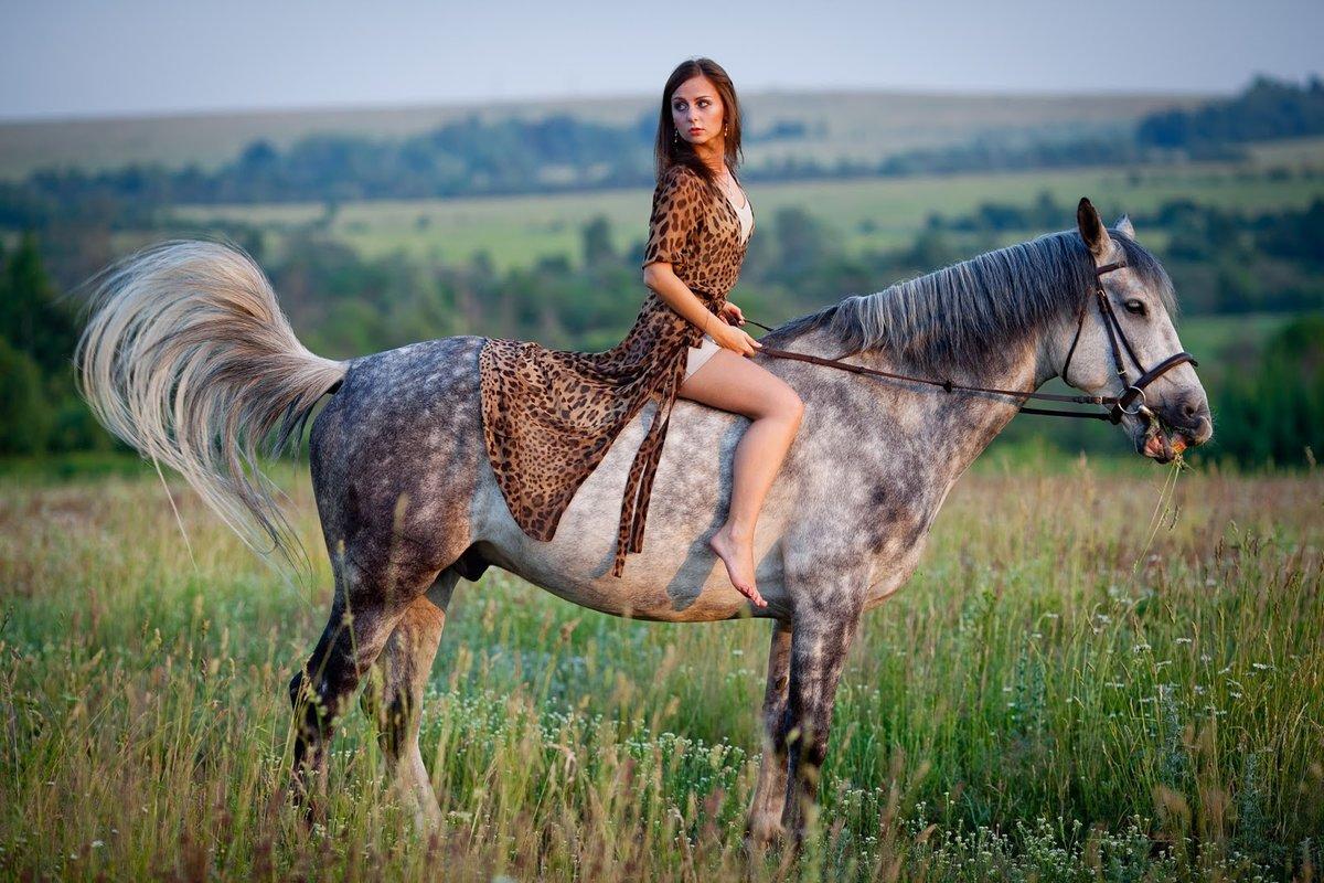 практически создать картинки с лошадьми мать нашей