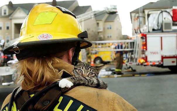 Смешная картинка спасателя