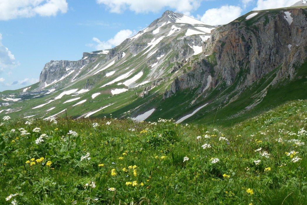 картинки гор нашего края что будет