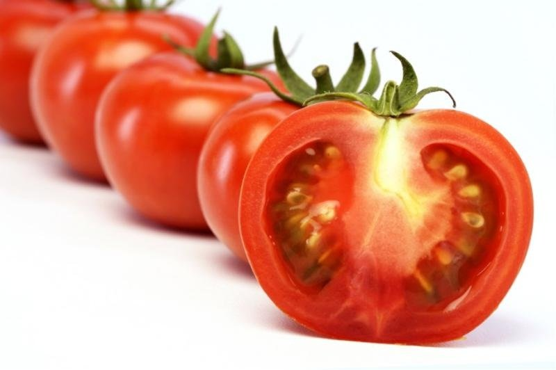 tomato thesis