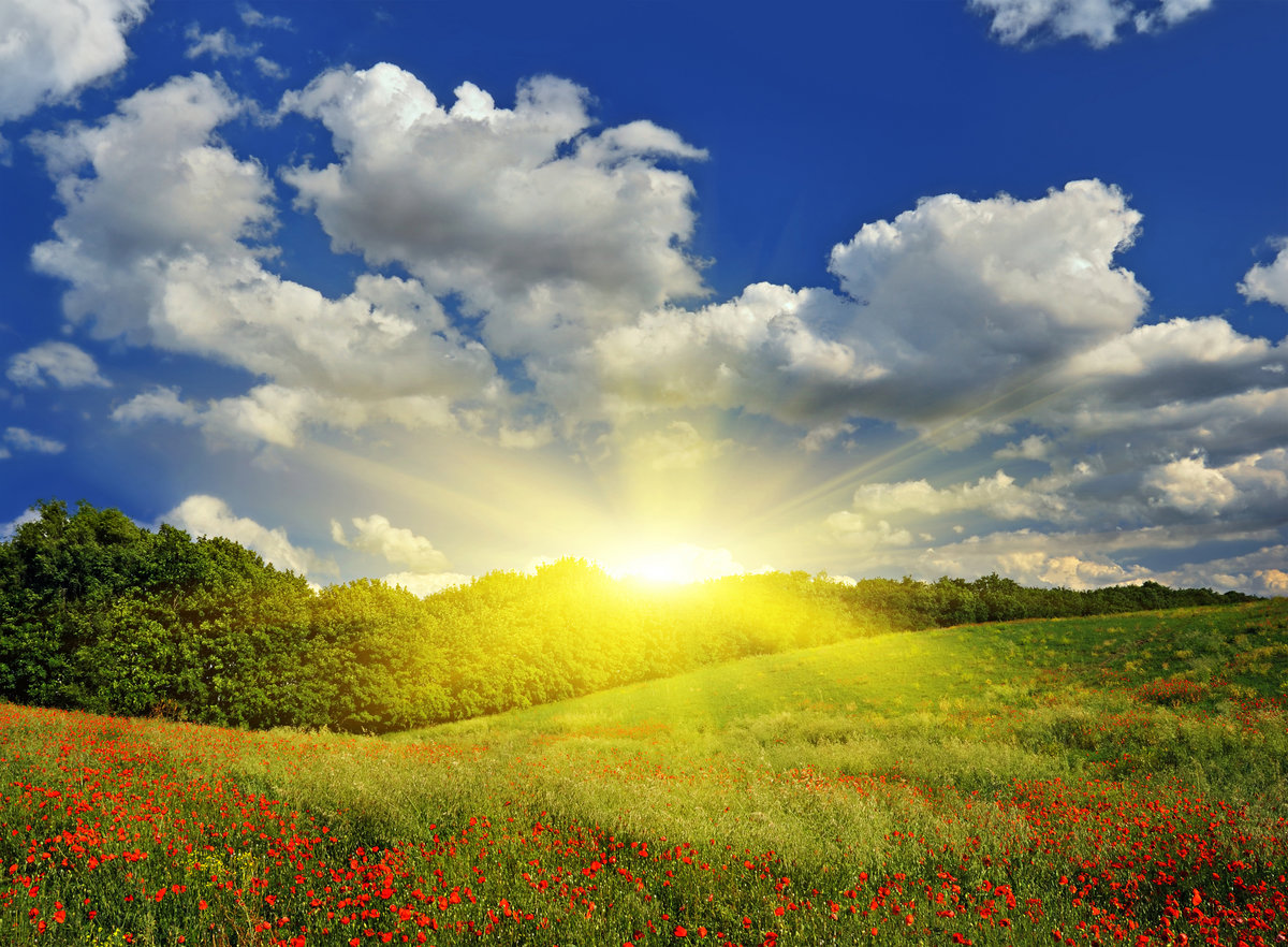 Теме, красивые открытки восхода солнца