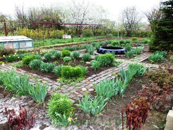 Идеи, примеры, как сделать дизайн садового участка своими руками. Фотогалерея удачного дизайна сада и огорода.