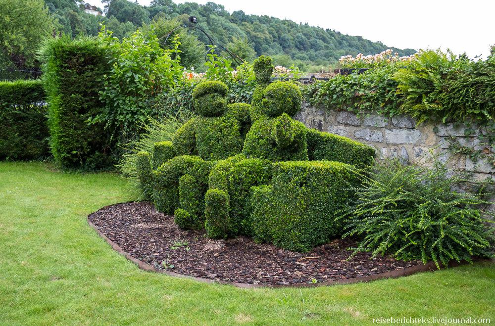 кустарники в ландшафтном дизайне фото