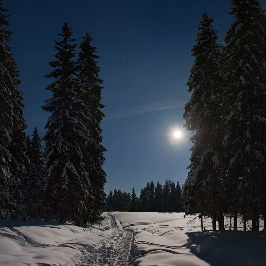 курорты зима лес картинки ночь угол рамки