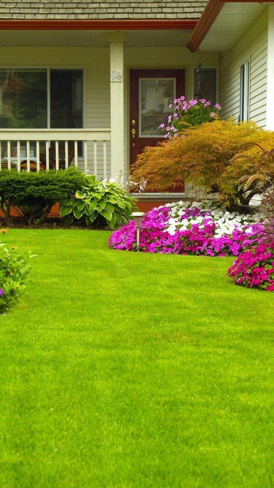 Дом, сад, газон