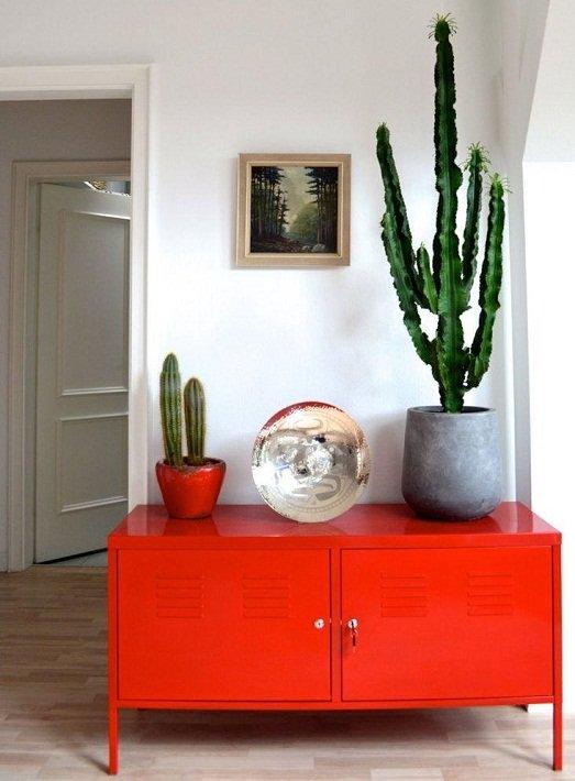 кактусы смотрятся великолепно в маленькой гостинной на тумбочке возле окна