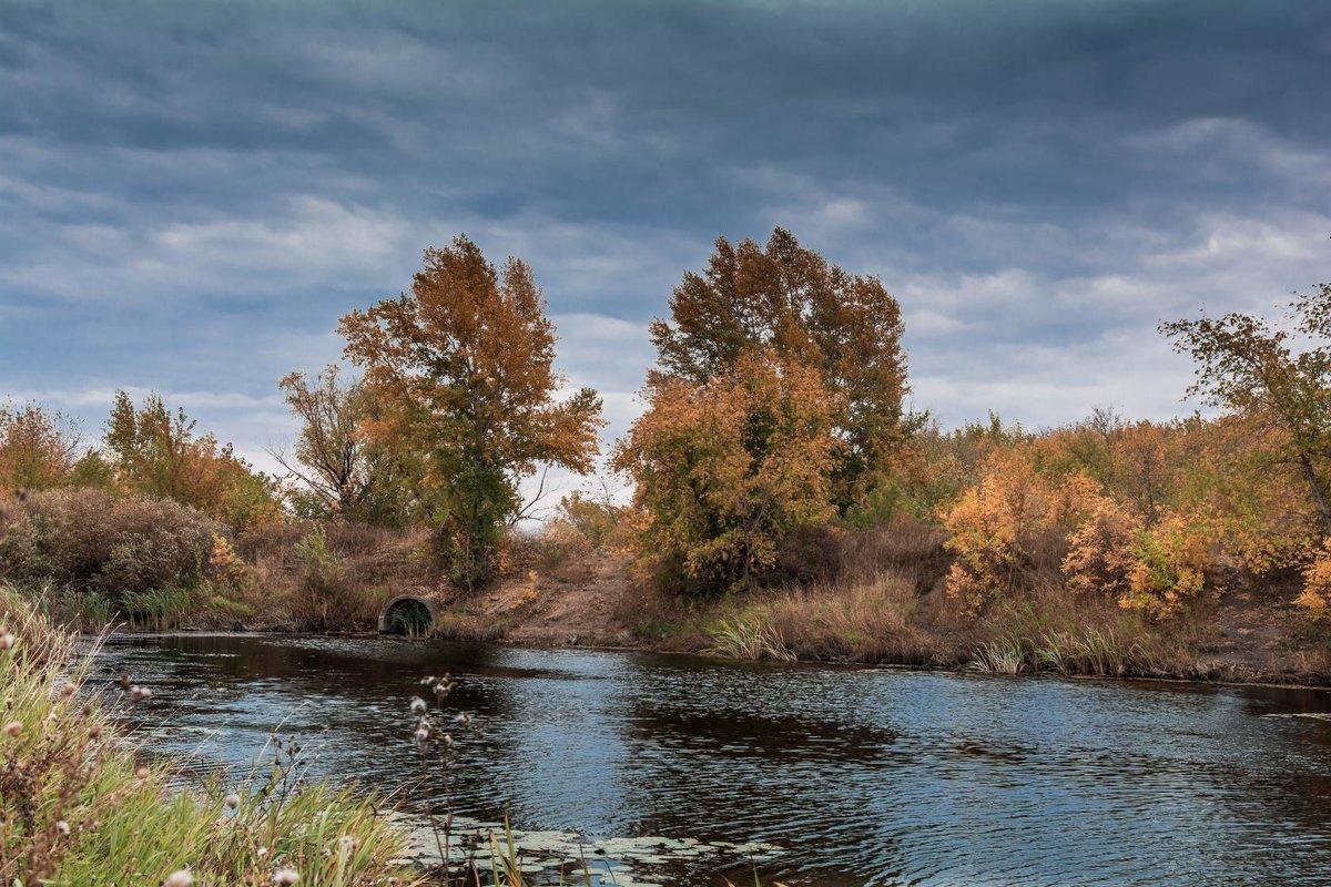 Осень хмурая картинки