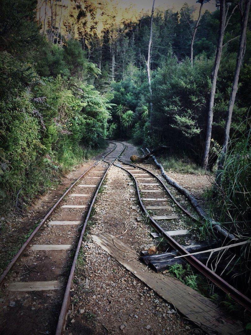 Заброшенные железные дороги россии фото
