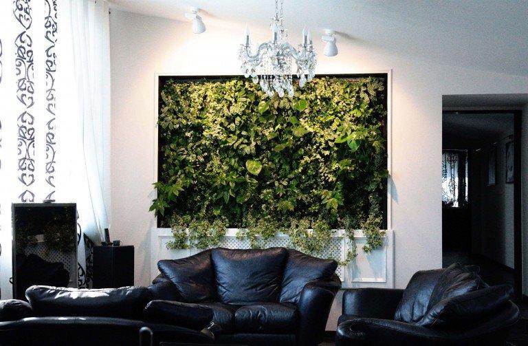 Панно из комнатных растений в гостиной с черной кожаной мебелью