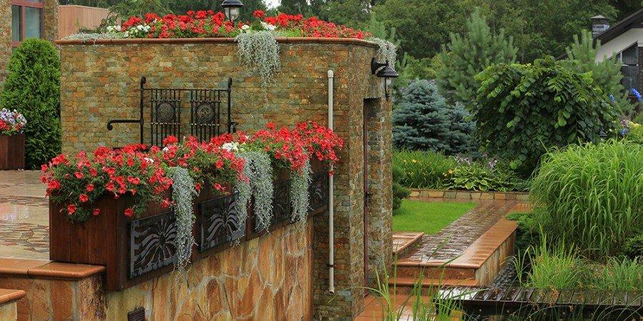 """Вертикальное озеленение балкона на даче"""" - карточка пользова."""