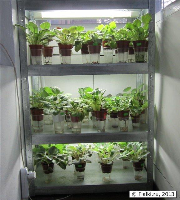 """Стеллаж на балкон для разных растений"""" - карточка пользовате."""
