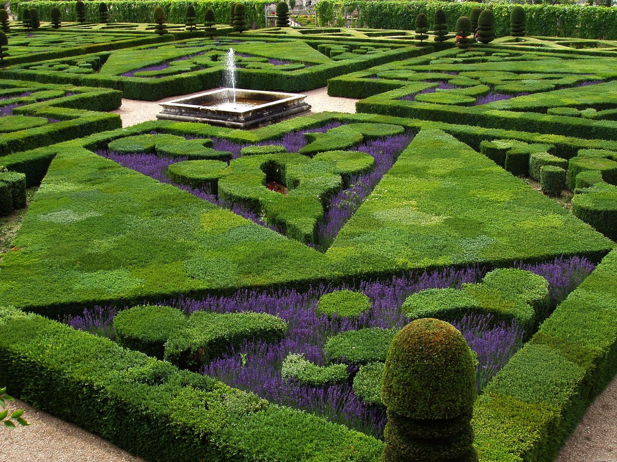 сады вилландри фото