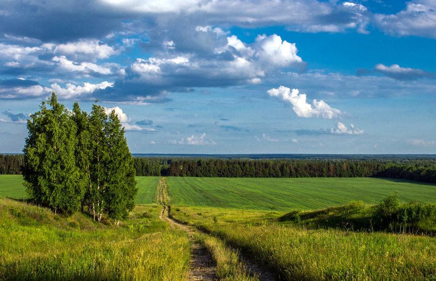Фото природы района