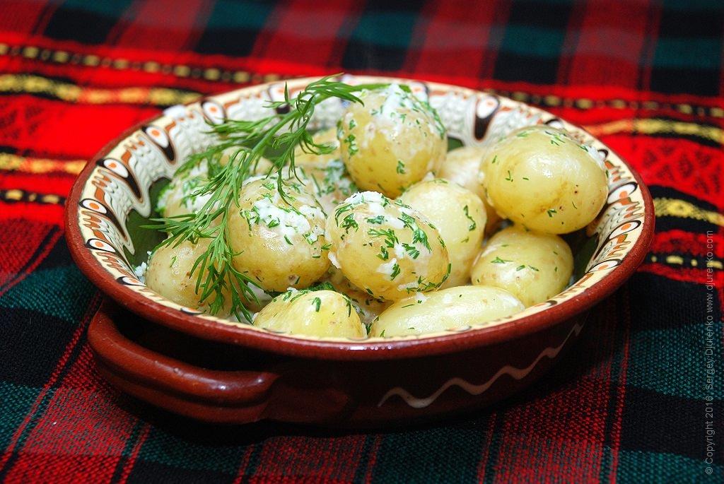 Картинка молодая картошка с укропом