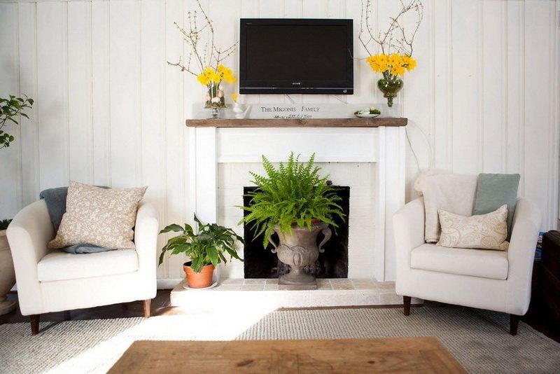 Комнатные растения в зоне камина в гостиной в восхитительном деревенском стиле