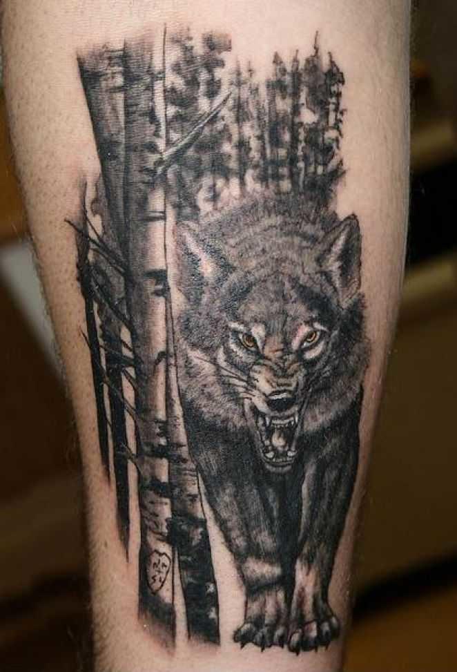фото тату волк в лесу да, настоящее время