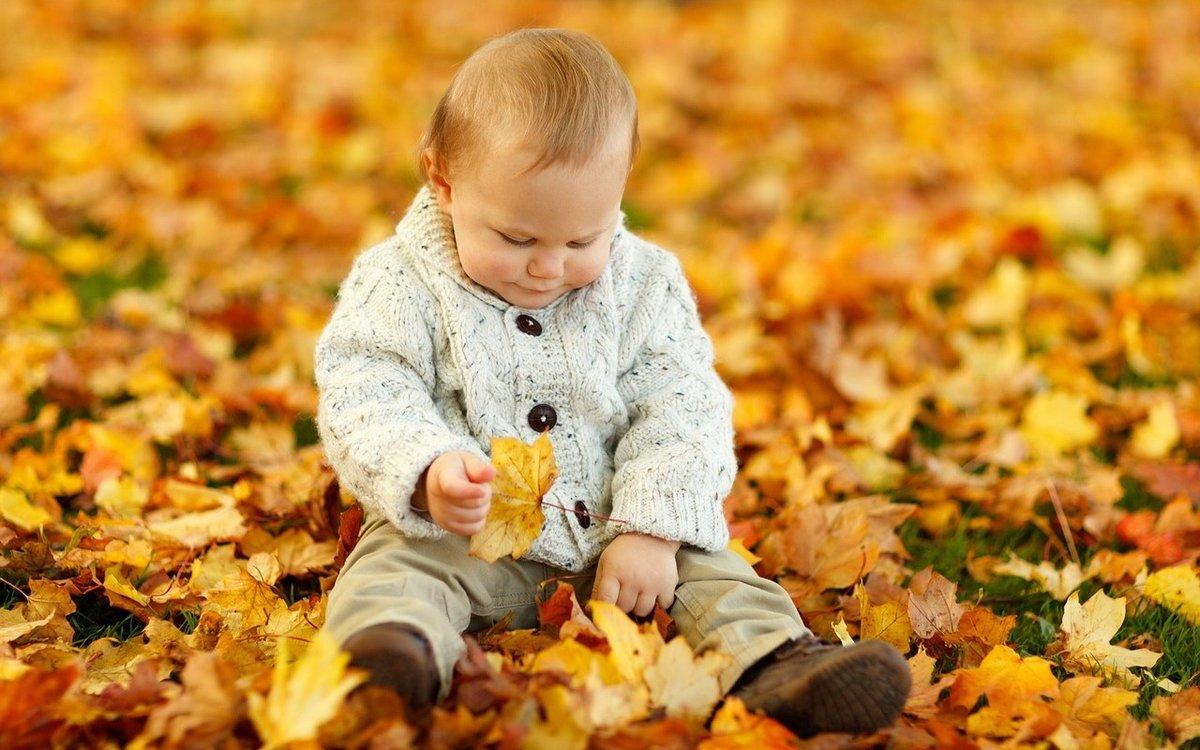 Прикольные, картинки осень и дети