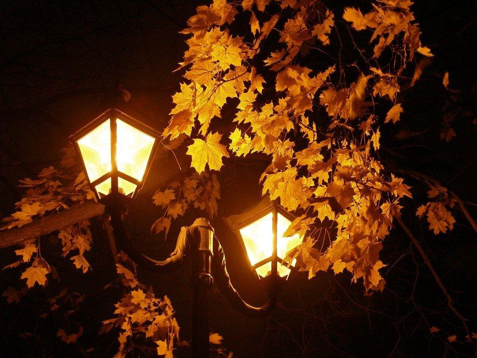 Ночные картинки осень