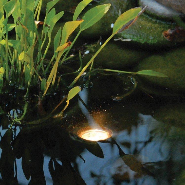 Пруд: LED освещение пруда - идеи и советы для красивых световых эффектов в саду.