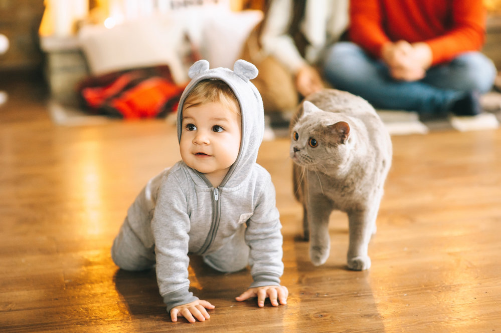 Открытки, смешные картинки про животных детские