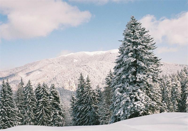 Заснеженные вершины на курорте Предял.