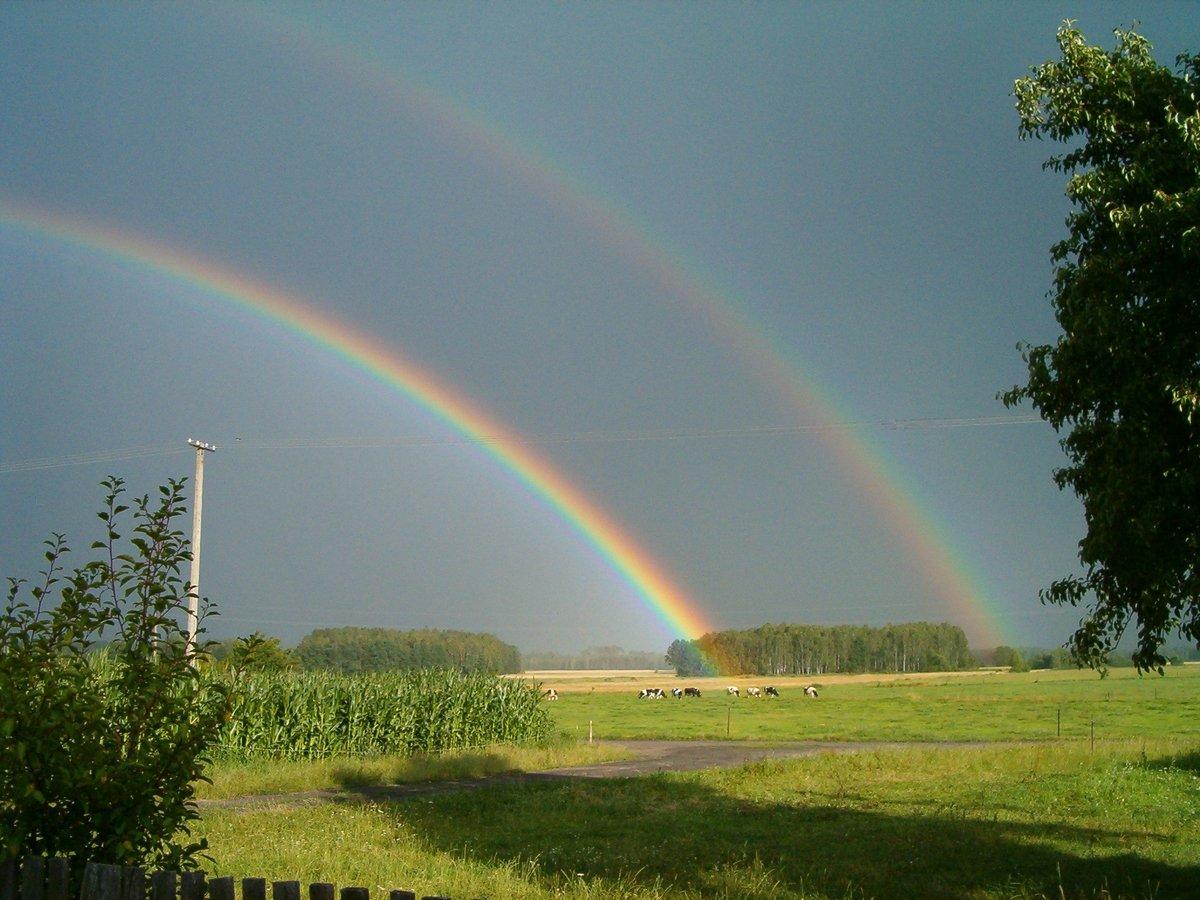 свой яблоневый фото радуги над землей легко воспринимается