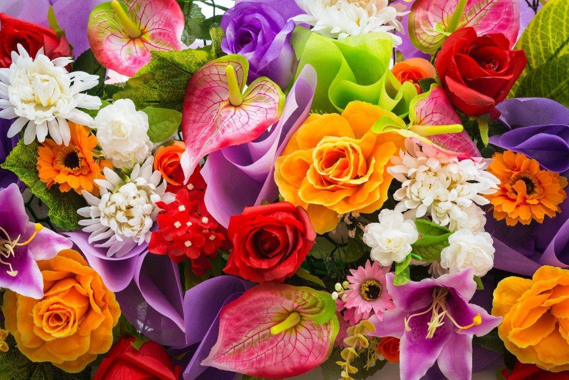 Самые красивые цветы мира открытки
