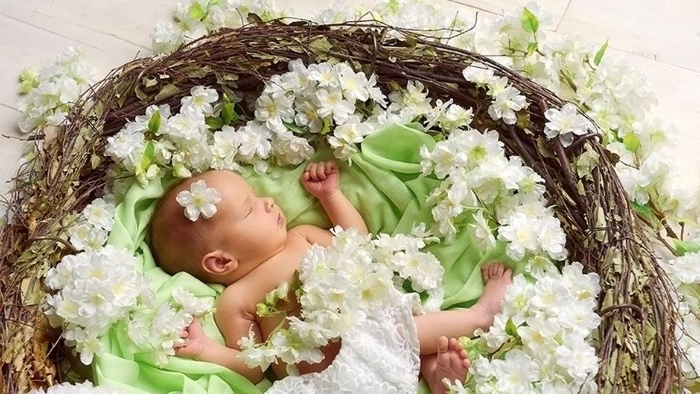 Фото малыша в цветах 6