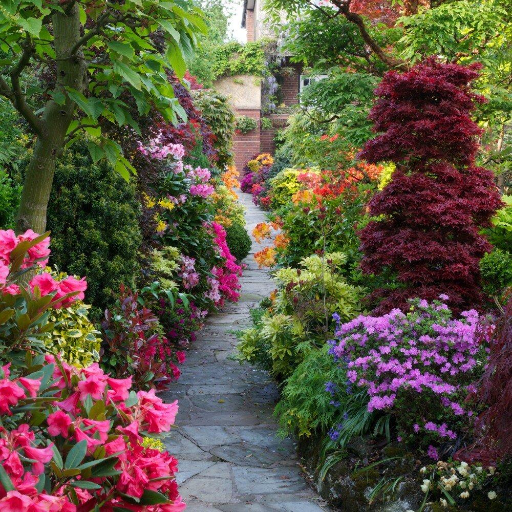 красивый сад с цветами фото предлагают носить одеждой