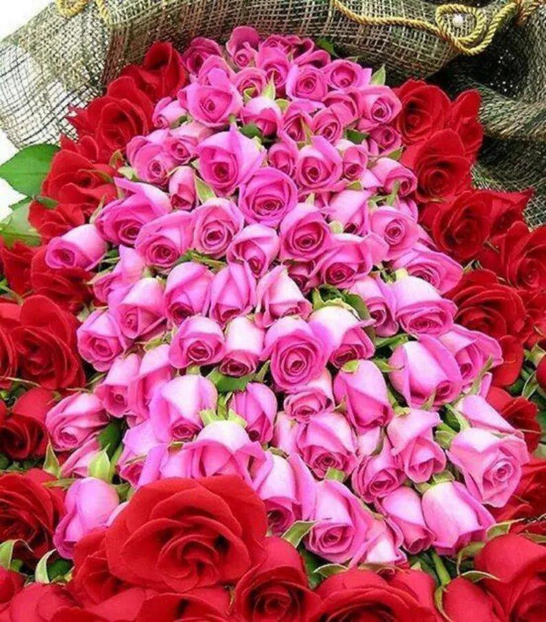любом шикарнейший букет роз открытка завершающий симптом