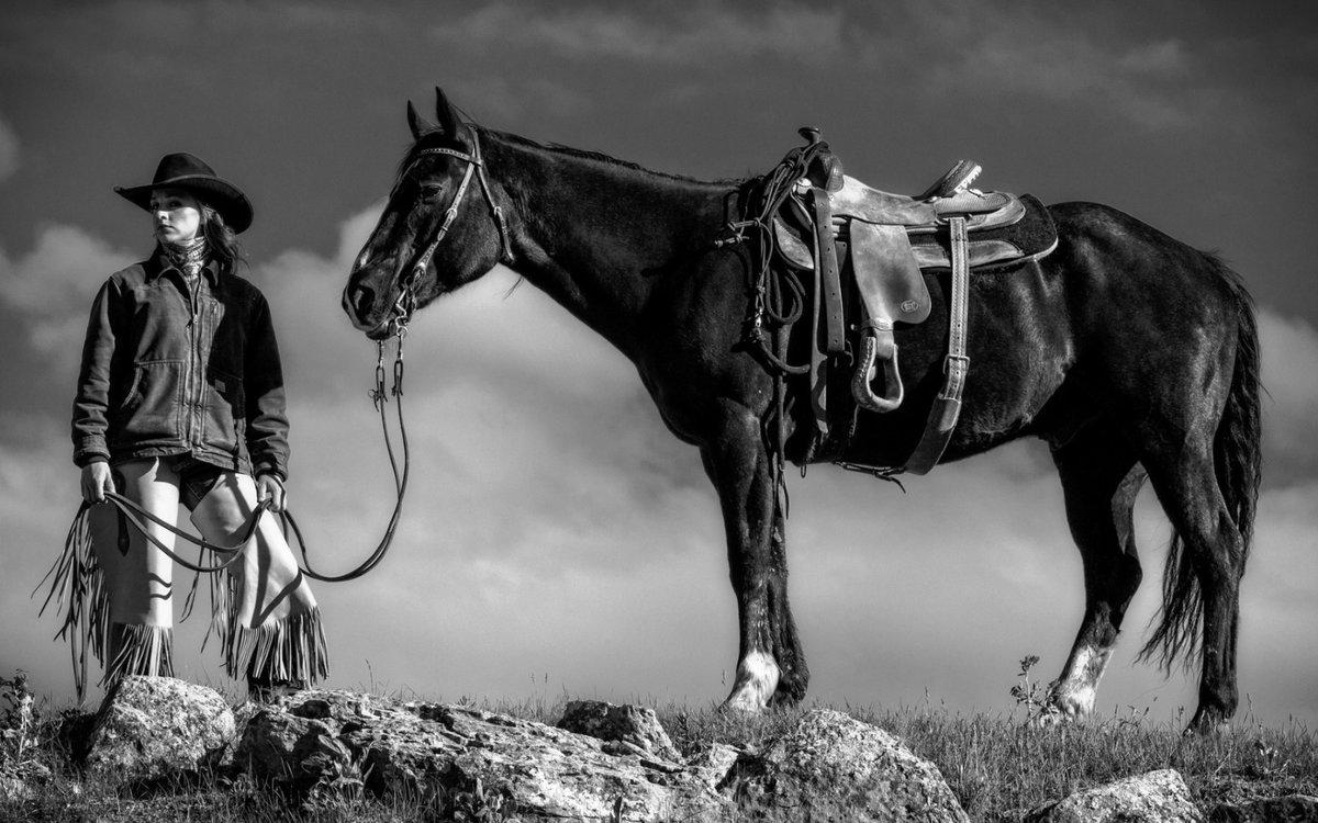 картинки дикого запада диких лошадей ходовая палатка